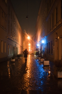 Vienna brick streets at night. Vienna, Austria, Western Europe.
